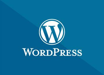Wordpress hjemmesider